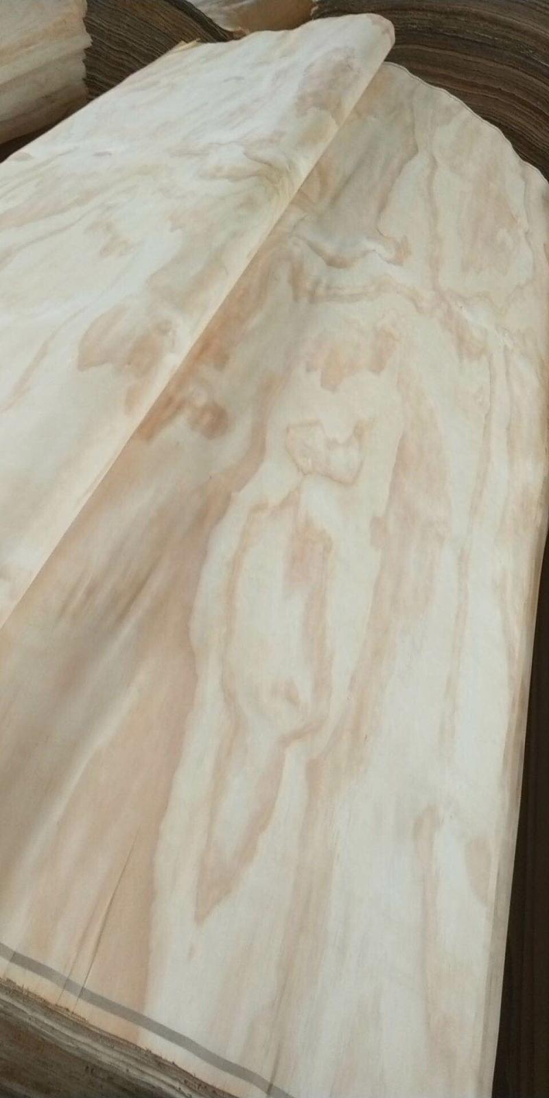 辐射松木皮
