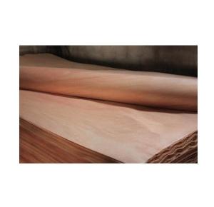 红橄榄木皮