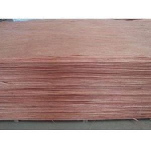 红橄榄面皮加工厂