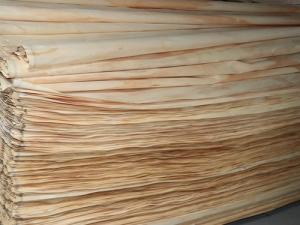 辐射松木皮厂
