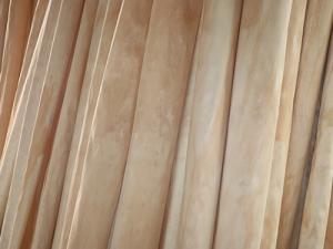 辐射松木皮厂家